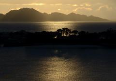 ...and golden sunset (talourcera) Tags: sunset puesta puestadesol golden islascíes ciesislands toralla ríadevigo inmemoryof inlovingmemory enrecuerdode recuerdode