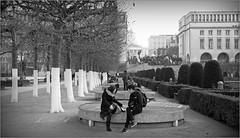 Jardin du Mont des Arts, Bruxelles, Brussel, Belgium (claude lina) Tags: claudelina belgium belgique canon bruxelles brussel jardin garden arbres trees jardindumontdesarts