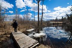 Spring has Sprung...maybe! (Kat Hatt) Tags: gullcreek canada arden spring blueskies bridge footbridge man creek water ice