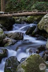 Petit pont... (D@rkne§§260) Tags: nikon1j5 nikon petitpont pontenbois bridge rivière river eau water poselongue longexposure nd400 filtrend400 cascade rocher caillou paysage nature