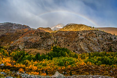 Rainbow Color Over Fall Color (Jeffrey Sullivan) Tags: rights reserved fall colors aspen bishop california usa landscape nature photography canon eos 40d jeffsullivan photo copyright october 2008 jeff sullivan allrightsreserved