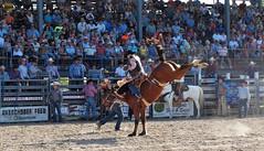 P3110252 (David W. Burrows) Tags: cowboys cowgirls horses cattle bullriding saddlebronc cowboy boots ranch florida ranching children girls boys hats clown bullfighters bullfighting