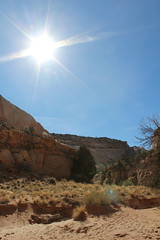IMG_3957 (LBonvouloir) Tags: utah arches canyonland capitol reef