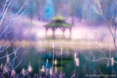 Dreamy (Brian M Hale) Tags: tower hill botanic botanical garden boylston ma mass massachusetts gazebo pond pool water reflection nature outside outdoors new england infrared ir full spectrum lifepixel orange filter 550 550nm canon t4i modified converted purple pink architecture wilderness peacefull dreamy lensbaby velvet velvet56 56mm brian hale brianhalephoto