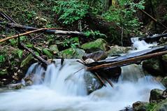 Todd Creek (J-Fish) Tags: toddcreek creek water sanbornpark saratoga california d300s 1685mmvr 1685mmf3556gvr