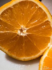 67/365 - Orange