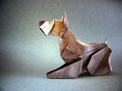 Chien de Terrier - Barth Dunkan (Rui.Roda) Tags: origami papiroflexia papierfalten dog perro cão chien de terrier barth dunkan