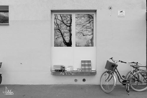 Wyleregg Selection (Street)