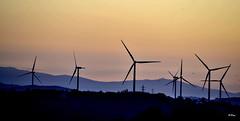 Molinos de viento (ZAP.M) Tags: amanecer molinosdeviento siluetas contraluz nikon nikond5300 zapm mpazdelcerro flickr chiclana cádiz andalucía españa