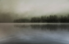 Peaceful Morning (jeanmarie's photography) Tags: jeanmarieshelton jeanmarie morning mist minimalistic fog foggy sunrise nikon nikond810 nature reflections outdoors serene