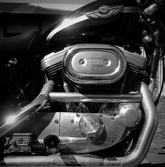 1200 cc (Con_Pyro) Tags: 2017 rolleiflex35b tessar75mm 120film film monochrome shanghaigp3 conpyro sportster harley davidson