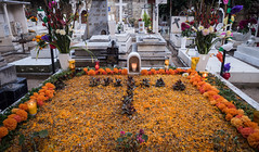 Oaxaca Day of the Dead cemetary