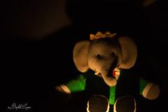 Trom-peur (baptiste.lasnier) Tags: lumière peluche ambiancedintérieur peur ombres éclairage imagination babar éléphant enfance studio