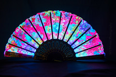 Luminance-3305 (MVMoorePhotography) Tags: fan light luminence color