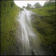 Hasselblad 500C  C  FujiProvia400  Waterfall Ometepe II (Gustaf_E) Tags: 6x6 mediumformat island waterfall rainforest 120film jungle nicaragua vulcano centralamerica ometepe vulkan djungel  fujiprovia400 vattenfall regnskog hasselblad500c centralamerika mellanformat