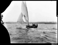 Mark Foy's FLYING FISH on Sydney Harbour