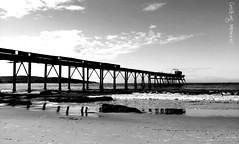 Catho  Beach adventure..... (MiaButcher) Tags: catherinehillbay flickrandroidapp:filter=none
