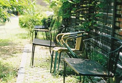 benches (blackteaj.justice) Tags: film taiwan taipei   carlzeiss kodakportra400 35m contaxrx planart1485 huashan1914 1914