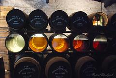 Vieillissement du Whisky (pascalb2009) Tags: voyage whisky irlande tonneau