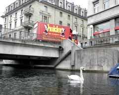 Bleicherweg Bridge over Schanzengraben, Zurich, Switzerland (jag9889) Tags: city bridge urban lake river puente schweiz switzerland crossing suisse suiza natural swiss zurich bridges pedestrian ponte oasis kayaking stadt promenade pont zrich svizzera brcke fluss channel waterway zrichsee lakezurich oase enge abfluss wassergraben 2011 svizra kanton schanzengraben bleicherweg naturoase y2011 jag9889 bridgesbykayak kayakbridgesset k713 seeabfluss