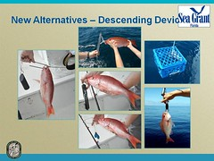 Slide 5 (MyFWCmedia) Tags: florida wildlife conservation commission weston fwc westonflorida commissionmeeting floridafishandwildlife myfwc myfwccom myfwcmedia