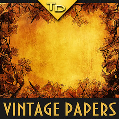 Vintage autumn paper with leaves (TanyDi) Tags: thanksgiving ol