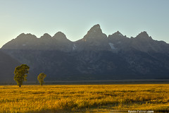 Teton Two (kevin-palmer) Tags: blue autumn trees sunset two sky snow mountains green fall field grass yellow gold golden evening nationalpark sunny september snowcapped clear glaciers wyoming peaks grandteton hdr grandtetonnationalpark mormonrow antelopeflats tamron1750mmf28 moultonhomestead pentaxk5