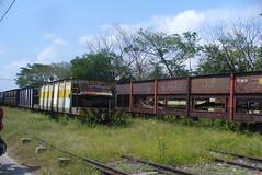 P1220923
