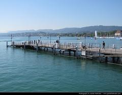 Zürichsee, Zurich, Switzerland (JH_1982) Tags: lake water statue boats schweiz switzerland suisse suiza zurich suíça zurique zürich helvetia svizzera züri 瑞士 zürichsee zwitserland zurigo zurichsee озеро svizra 스위스 苏黎世 szwajcaria スイス チューリッヒ turitg zurych schweizerische eidgenossenschaft zúrich 호 швейцария 苏黎世湖 취리히 цюрих ज़्यूरिख़ स्विट्ज़रलैण्ड チューリッヒ湖 цюрихское