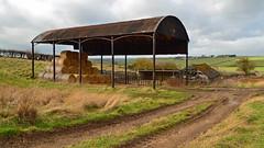 Barn 1 (AndyorDij) Tags: bales barn straw northamptonshire andrewdejardin