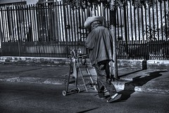 El afilador (Nuwi Martin) Tags: blancoynegro calle sombra anciano asfalto acera señor trabajador chillan afilador