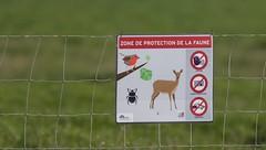 Zone de protection de la faune  - barrière le long du chantier du TGV (LGV)  vers Génerac   IMG_7265 (6franc6) Tags: languedoc gard 30 2014 6franc6 protection chasse