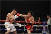 """Chavez Jr. vs. Vera II <a style=""""margin-left:10px; font-size:0.8em;"""" href=""""http://www.flickr.com/photos/95369066@N04/13163921143/"""" target=""""_blank"""">@flickr</a>"""