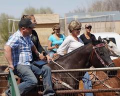 Dewey Barrel Race (Garagewerks) Tags: arizona horse woman sport female race all sony country barrel arena rodeo dewey cowgirl athlete equine 50500mm views50 views100 views200 views150 f4563 slta77v