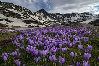 Spring in Rila mountain