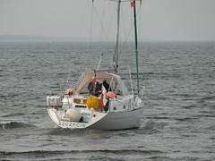 Segeljacht NINIA in Kolobrzeg (zeesenboot) Tags: poland polska balticsea polen ostsee kolobrzeg segelboot sailingboat ninia kołobrzeg kolberg baltyk sailingyacht jacht segelyacht jachtżaglowy