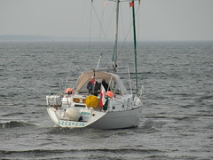 Segeljacht NINIA in Kolobrzeg (zeesenboot) Tags: poland polska balticsea polen ostsee kolobrzeg segelboot sailingboat ninia koobrzeg kolberg baltyk sailingyacht jacht segelyacht jachtaglowy