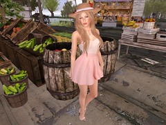 "New Toulouse - French Market - Free summer hats for men and women!  At this location is a small fruit stand and a cart with freebies.  I found this cute 1920's straw hat that is MOD so I could make it match my outfit. I also Happened to meet Henri Godenot, the town Mayor at this location.  If you come to the Sim say hello to him and you that saw the Sim on my blog :)  <a href=""http://maps.secondlife.com/secondlife/New Toulouse/194/210/23?sourceid=slshare_photo&utm_source=flickr&utm_medium=photo&utm_campaign=slshare"" rel=""nofollow"">Visit this location at French Market in Second Life</a> Visit the webpage: <a href=""http://www.newtoulouse.org/"" rel=""nofollow"">www.newtoulouse.org/</a>"