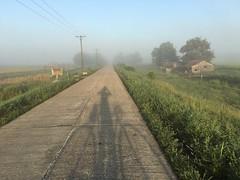 Myanmar, Yangon Region, Southern District, Dala Township, Ye Chaung Village Tract (Die Welt, wie ich sie vorfand) Tags: shadow myself myanmar burma bicycle cycling bike yangonregion yangon rangoon southerndistrict dalatownship dala yechaung