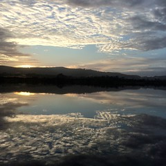 Early morning. Huon River.