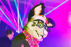 _MG_0677 (Tiger_Icecold) Tags: confuzzled cfz2016 cf2016 furcon furry convention fursuit birmingham party deaddog ddp deaddogparty