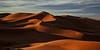 Sunrise in the desert (pe_ha45) Tags: desert sahara marokko nascerdusol leverdusoleil sunrise sonnenaufgang wüste deserto ergchebbi maroc marrocos marruecos