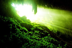 (The Salty Mist Photography) Tags: light nature caves caverns