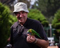 nicholls-8061 (yukkycakes) Tags: apple birds happy colorful feeding eating australia peter canberra parrots act goldcreek australiancapitalterritory nicholls smiing canberrawalkinaviary pwpix