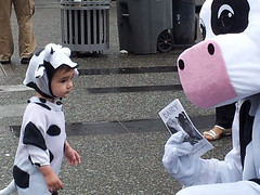 Mother's Day 2013 (liberationbc) Tags: vancouver mom cow cows animalrights mothers dairy calf mothersday granvillestreet advocacy animalwelfare liberationbc