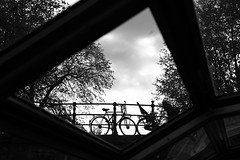 Just Amsterdam (Elios.k) Tags: bridge trees sky blackandwhite travelling tourism glass amsterdam bicycle silhouette horizontal contrast outdoors photography canal photo tour view many thenetherlands nopeople tourist northholland focusinbackground pixopolitan