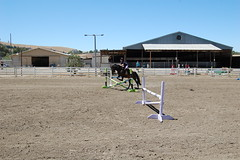 "Jumping Practice in the Outdoor Arena • <a style=""font-size:0.8em;"" href=""https://www.flickr.com/photos/92793179@N08/9301954067/"" target=""_blank"">View on Flickr</a>"