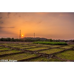 farm #sun #sunset #radiotower #mountains #sky... (i7man) Tags: sunset sky sun mountains farm radiotower siji nikond7000 uploaded:by=flickstagram instagram:photo=364198312180005490354685