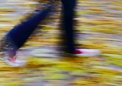 286 of 365-2013 (Dudefromtitan) Tags: autumn fall run converse leafs panning