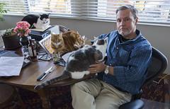 Family Portrait (A.Davey) Tags: me dot wendy elsie davey rescuecats